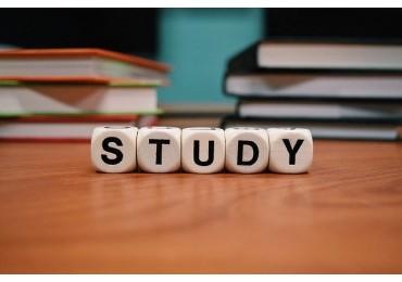 Torba na studia - jaka powinna być?